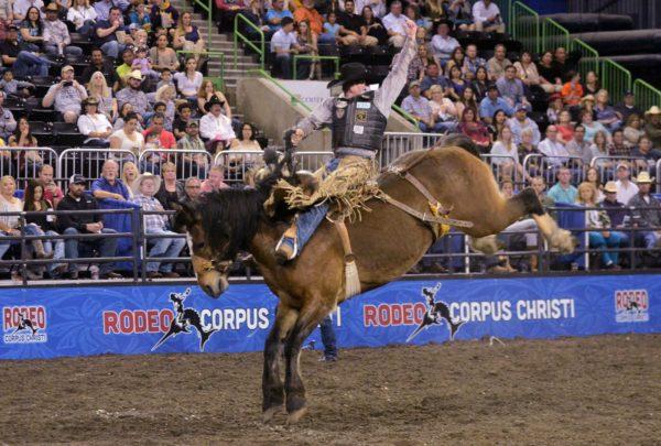 Rodeo Corpus Christi @ American Bank Center Arena   Corpus Christi   Texas   United States
