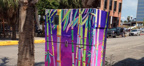 Painted Electrical Box