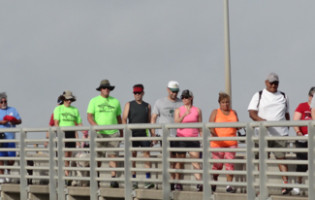 Harbor bridge walkers
