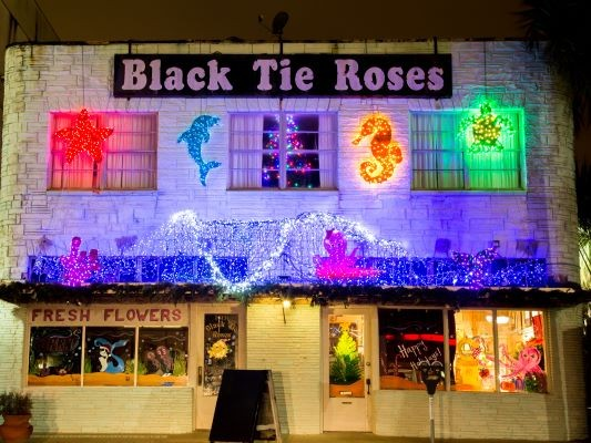 Black-Tie-Roses